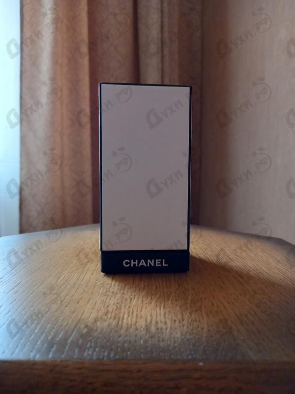 Купить 31 Rue Cambon от Chanel