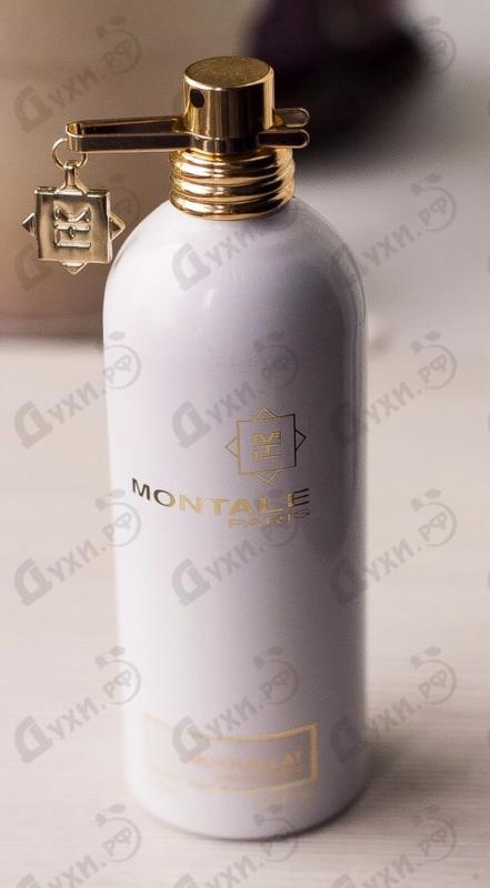 Купить Mukhallat от Montale