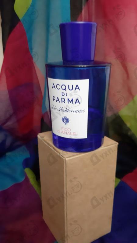 Духи Blu Mediterraneo - Fico Di Amalfi от Acqua Di Parma
