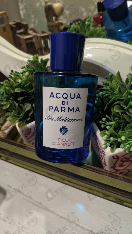 Парфюмерия Blu Mediterraneo - Fico Di Amalfi от Acqua Di Parma