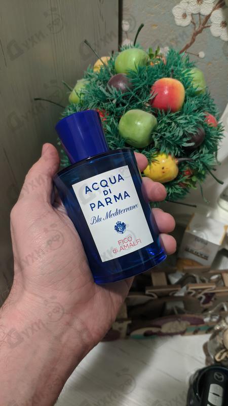 Купить Blu Mediterraneo - Fico Di Amalfi от Acqua Di Parma