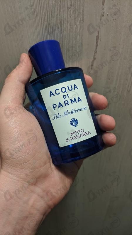 Купить Blu Mediterraneo Mirto Di Panarea от Acqua Di Parma