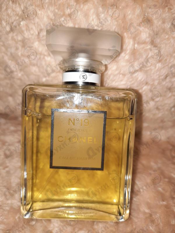 Парфюмерия Chanel 19 Poudre