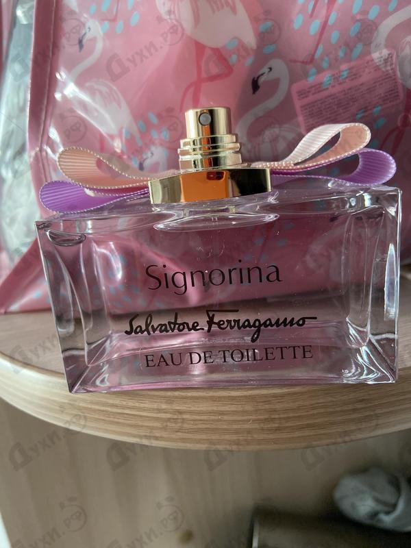 Купить Signorina от Salvatore Ferragamo