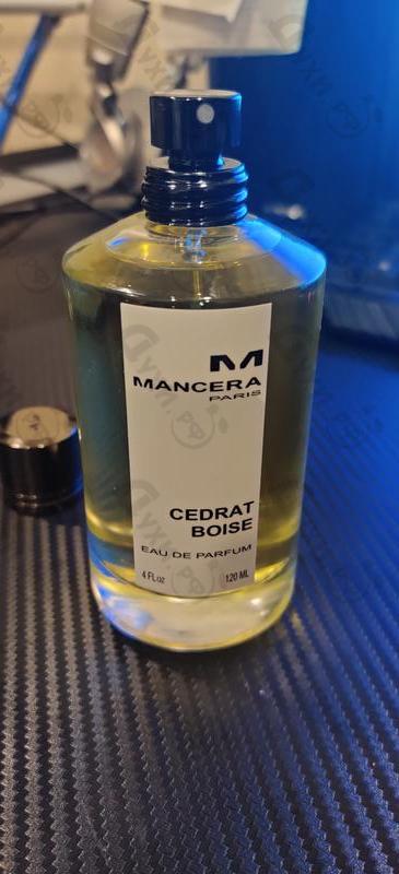 Купить Cedrat Boise от Mancera