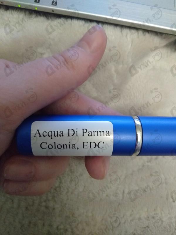 Отзывы Acqua Di Parma Colonia