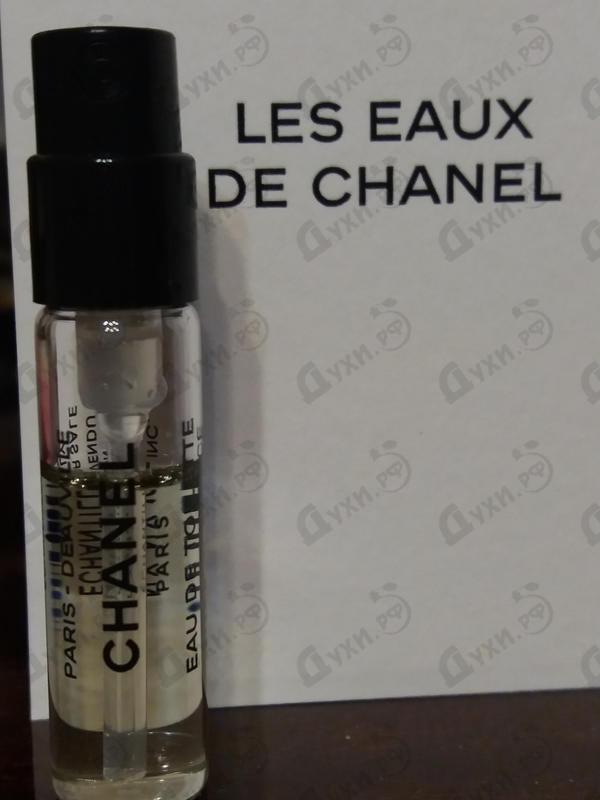 Купить Chanel Paris – Biarritz