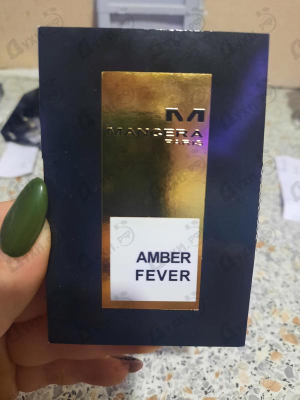 Купить Amber Fever от Mancera