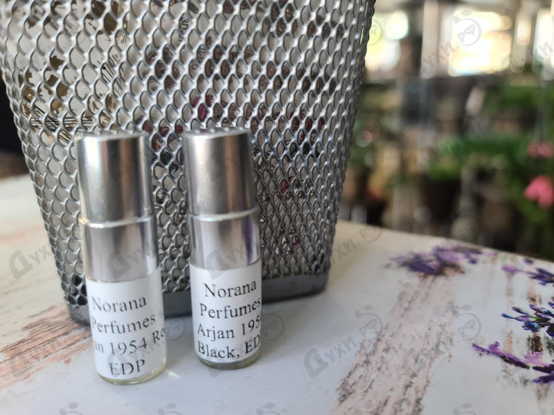 Отзыв Norana Perfumes Arjan 1954 Black
