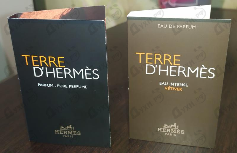 Отзыв Hermes Terre D'hermes