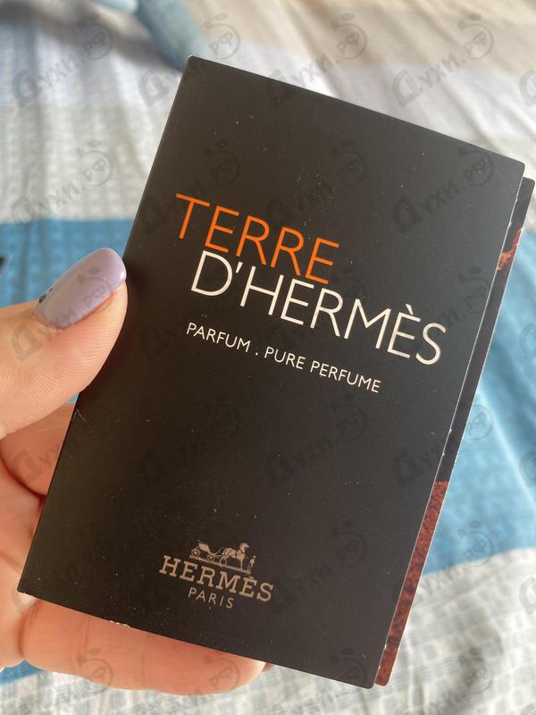 Купить Hermes Terre D'hermes