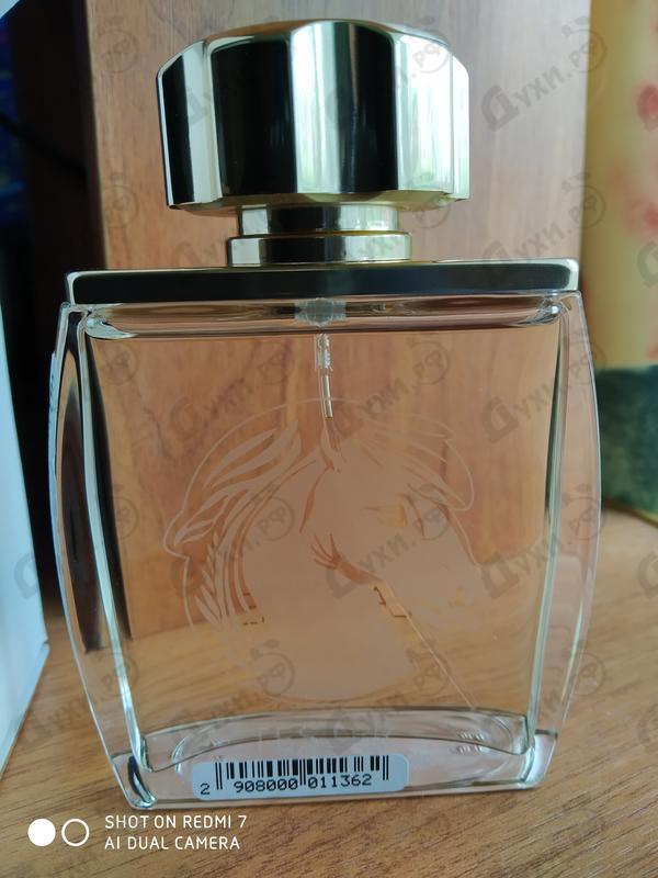 Парфюмерия Lalique Pour Homme Equus