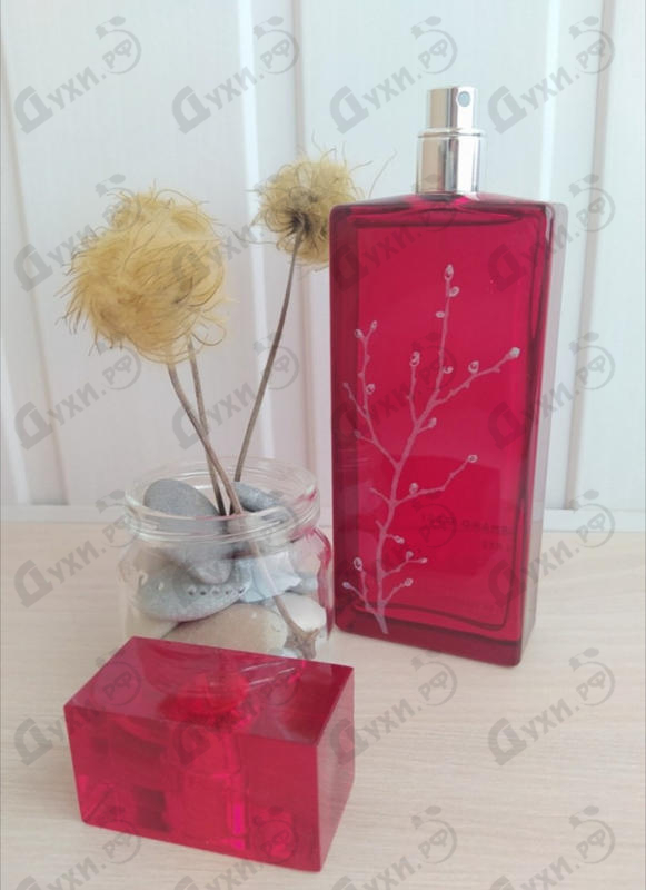 Купить Armand Basi In Red