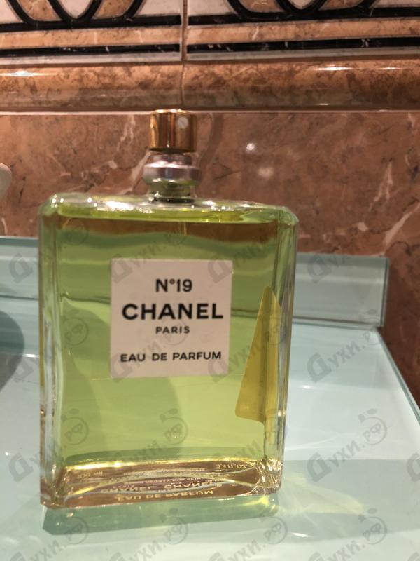 Купить Chanel 19