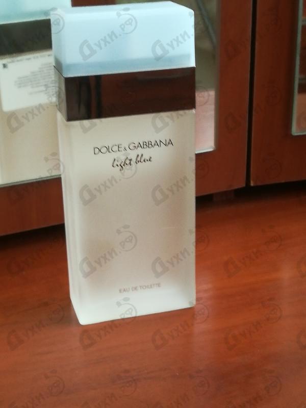 Купить Light Blue от Dolce & Gabbana