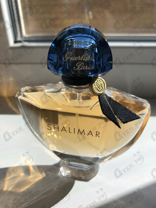 Купить Shalimar от Guerlain