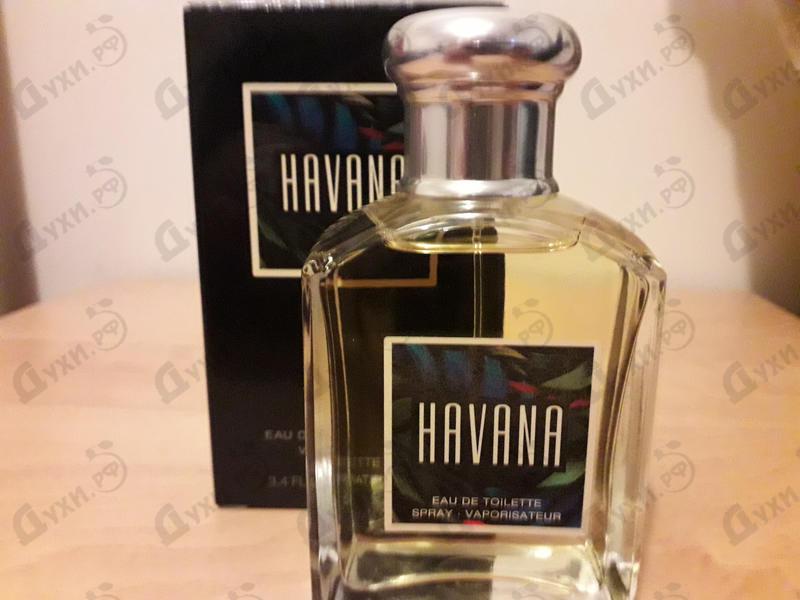 Отзыв Aramis Havana
